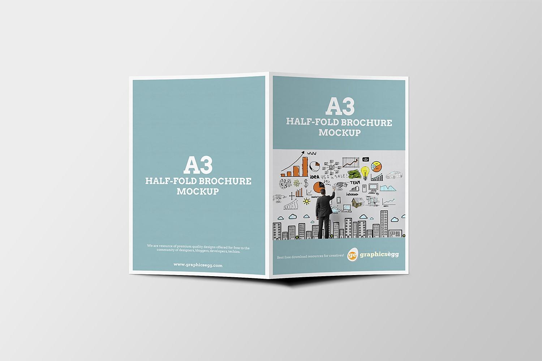 Брошюры А3 в Москве | фото 3