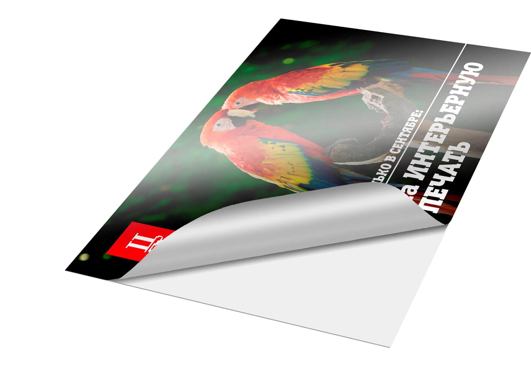 Печать наклеек на пленке в Москве   фото 3