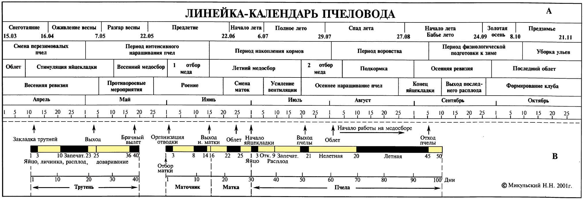 Изготовление календарей-линеек на заказ в Москве | фото 5