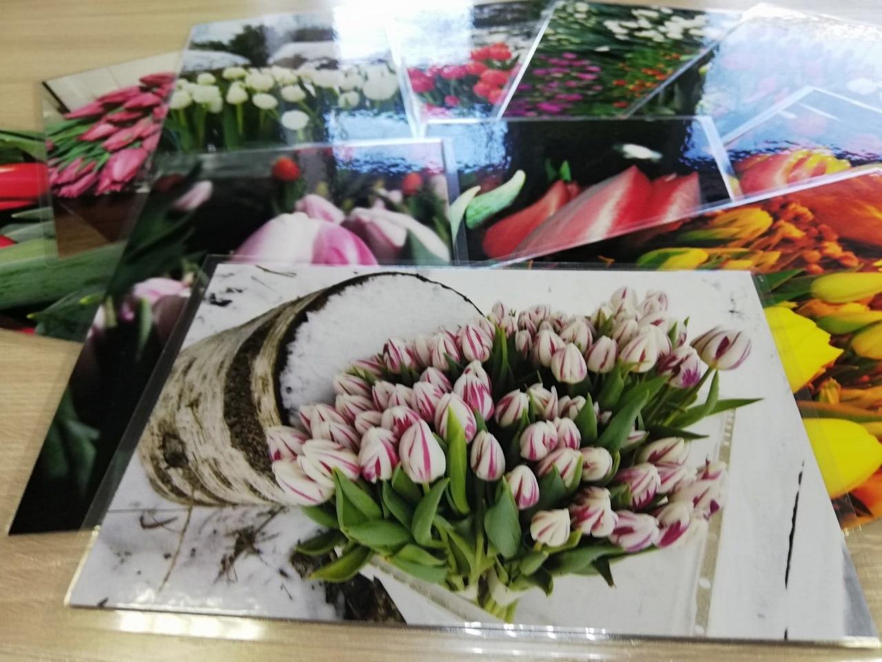 Печать картин на бумаге в Москве | фото 4