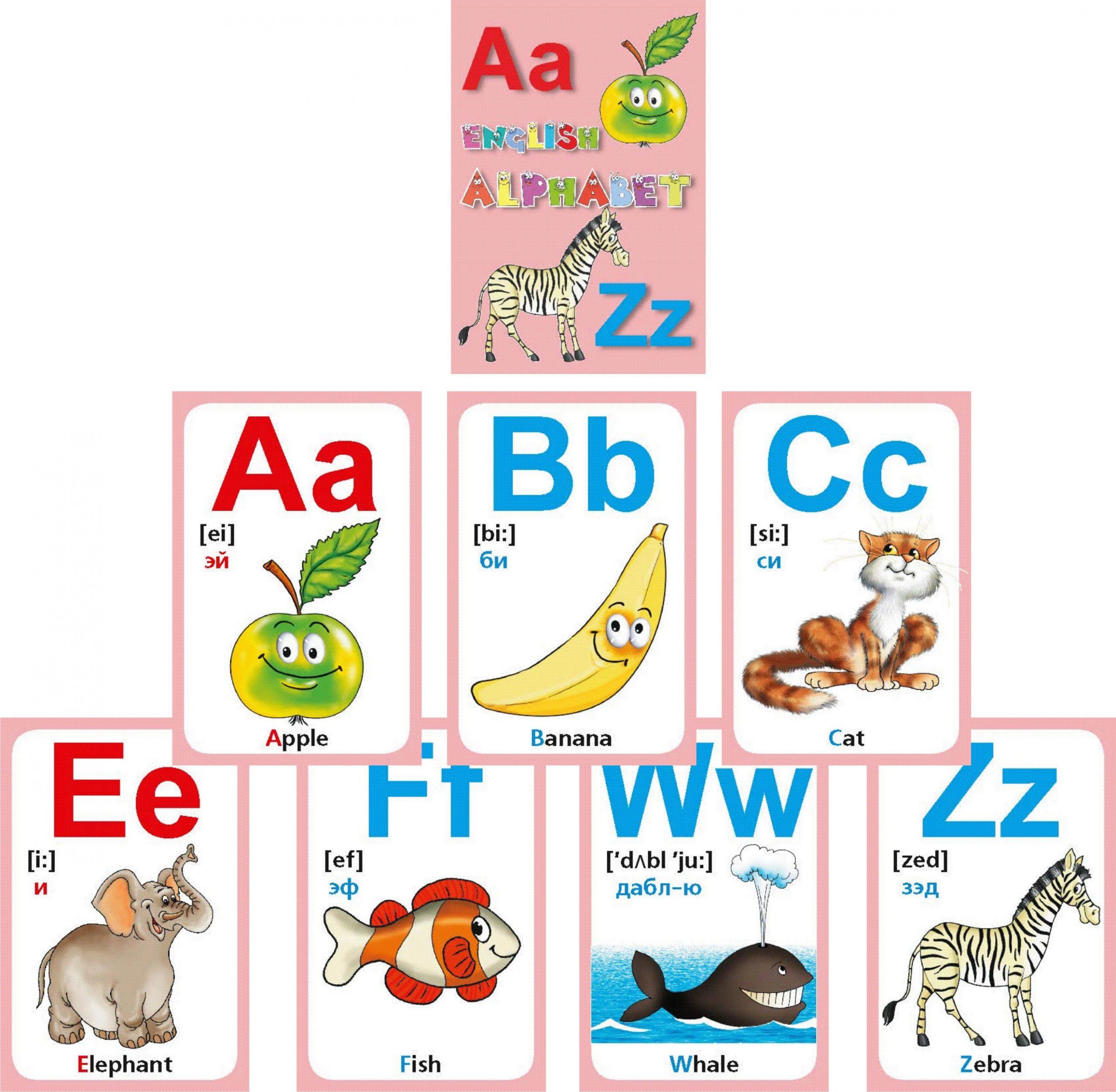 Печать карточек английского алфавита в Москве   фото 1