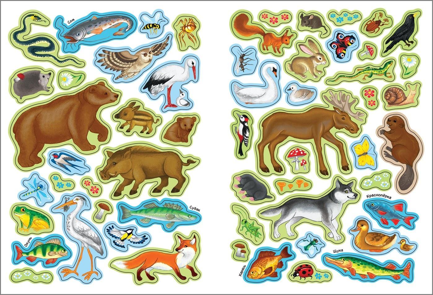 Печать наклеек животных в Москве | фото 4
